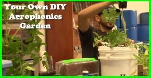 DIY Aerophonics Garden
