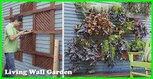 Living Wall Garden