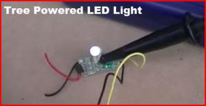 tree powered LED light